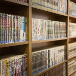 Collection of Manga Volumes | Mangaka, The Profession That Underpins Japan's Anime Industry