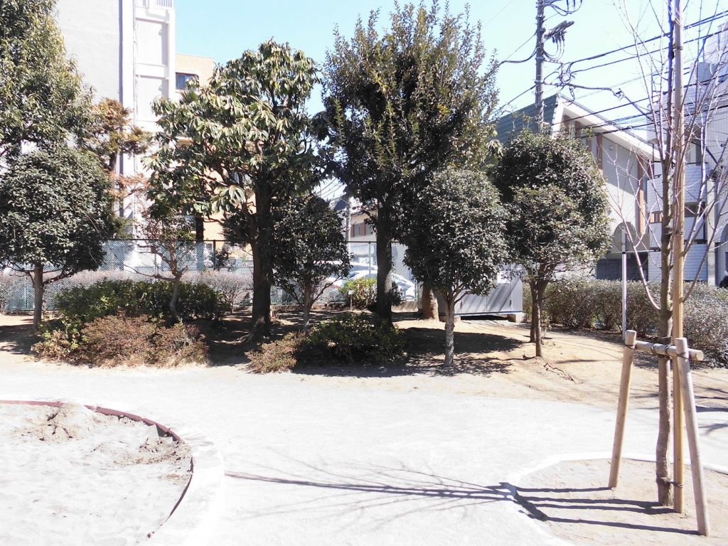 The Real Life Locations of 'Your Lie in April' |  Izumi Kobushi Park