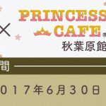 Collaboration between the Anime Room Mate and the Popular Princess Cafe