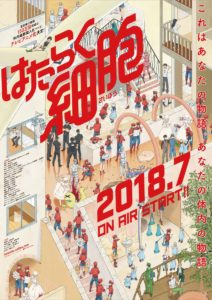 Cells at Work! Anime Visual