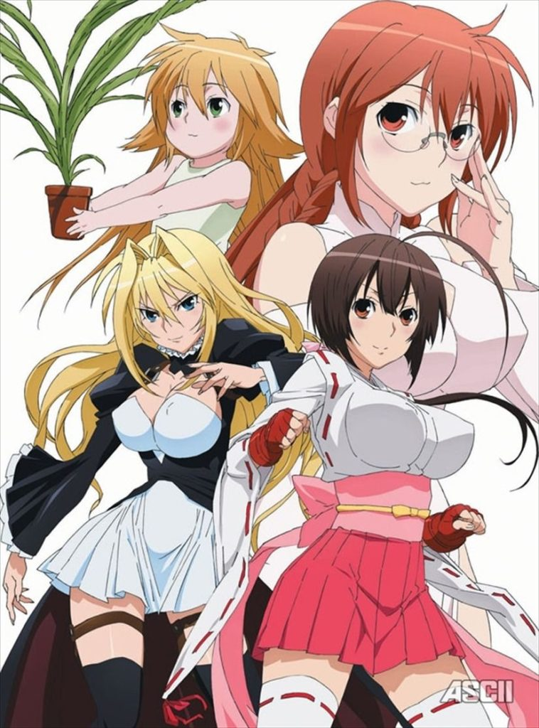 Sekirei Anime Visual