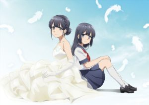 Seishun Buta Yarou wa Yume Miru Shojo no Yume wo Minai (Rascal Does Not Dream of Dreaming Girl) Anime Movie Visual
